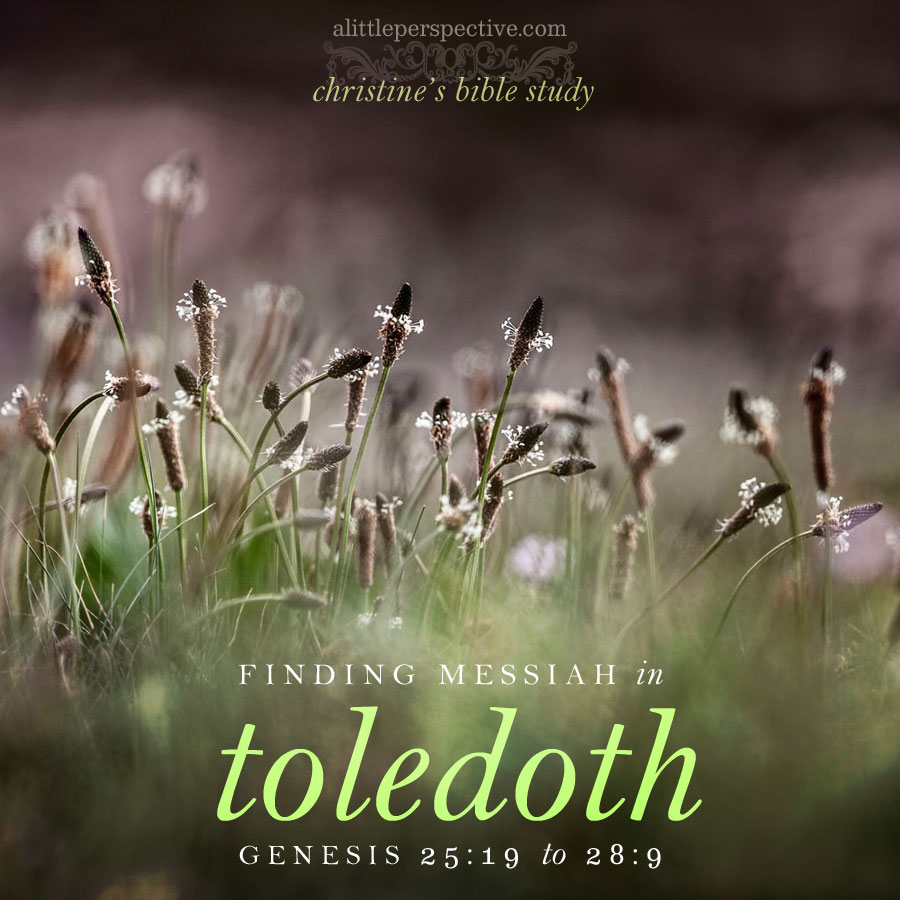 finding messiah in toledoth, genesis 25:19-28:9 | christine's bible study at alittleperspective.com