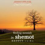 finding messiah in shemot, exo 1:1-6:1