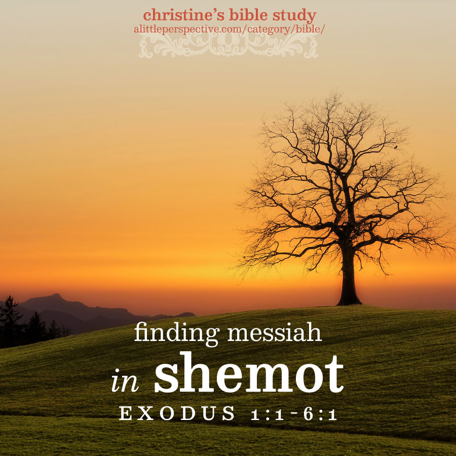 finding messiah in shemot, exo 1:1-6:1