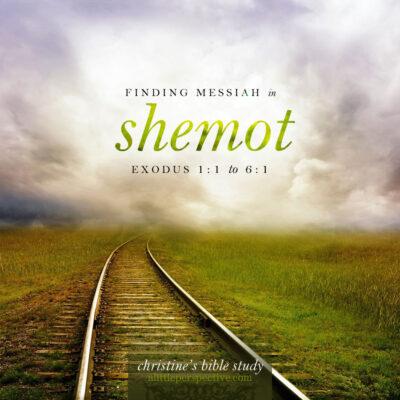 finding messiah in shemot, exodus 1:1-6:1