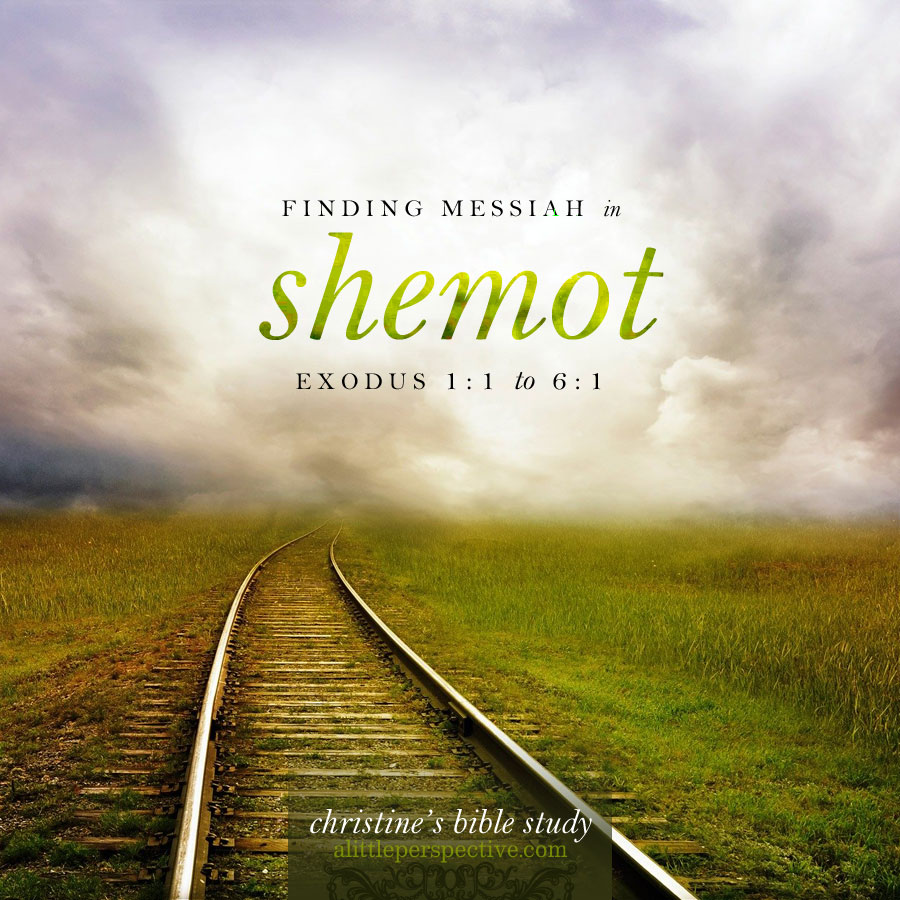 finding messiah in shemot, exo 1:1-6:1 | christine's bible study at alittleperspective.com
