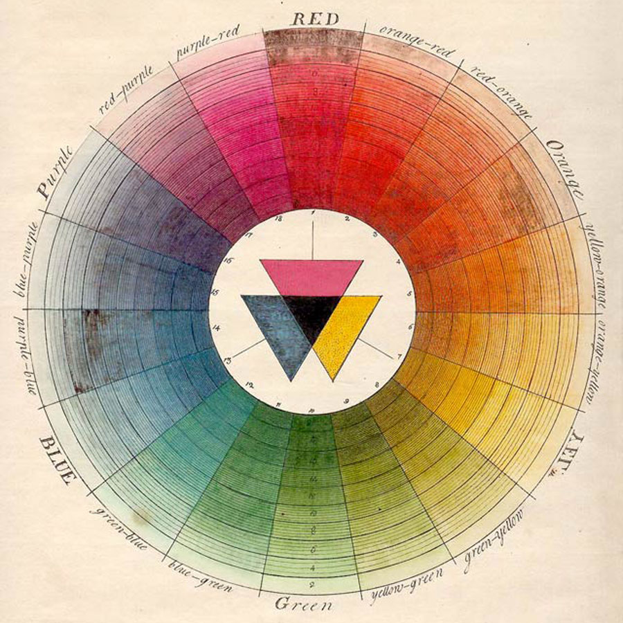 The Natural System of Colours by Moses Harris | the transformed home at alittleperspective.com