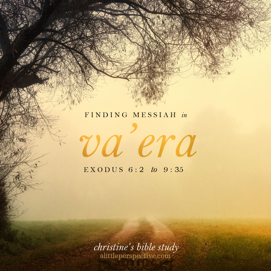 finding messiah in va'era | christine's bible study at alittleperspective.com