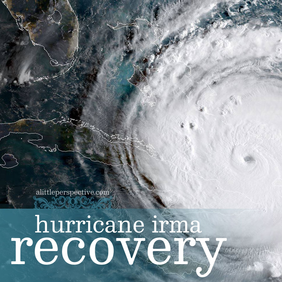 hurricane irma recovery | alittleperspective.com