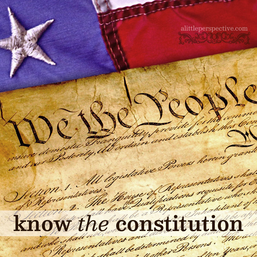 know the constitution | alittleperspective.com