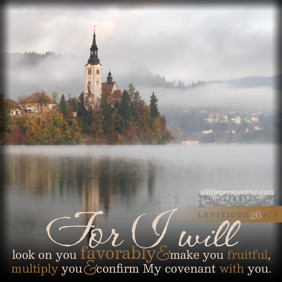 Lev 26:6 | scripture pictures at alittleperspective.com