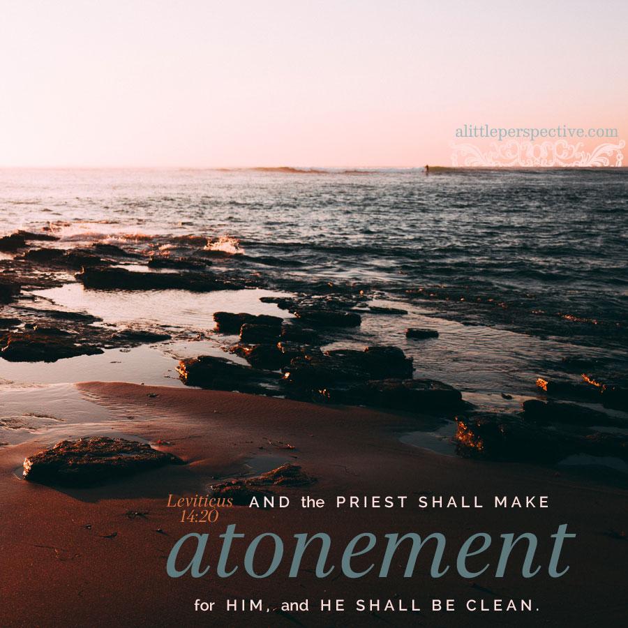 Lev 14:20 | scripture pictures at alittleperspective.com