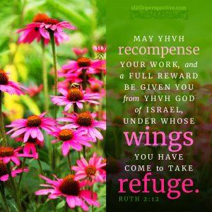 Rut 2:12 | scripture pictures @ alittleperspective.com