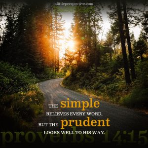 Pro 14:15   scripture pictures at alittleperspective.com