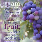 Joh 15:5 | scripture pictures at alittleperspective.com