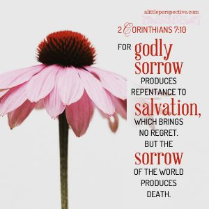 2 Cor 7:10   scripture pictures at alittleperspective.com