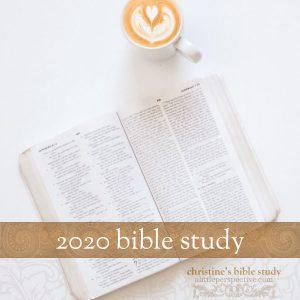2020 Bible Study | alittleperspective.com