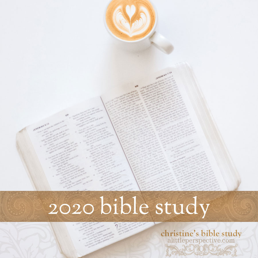 2020 Bible Study | alittleperspective.com