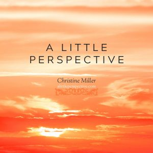 a little perspective by Christine Miller   alittleperspective.com