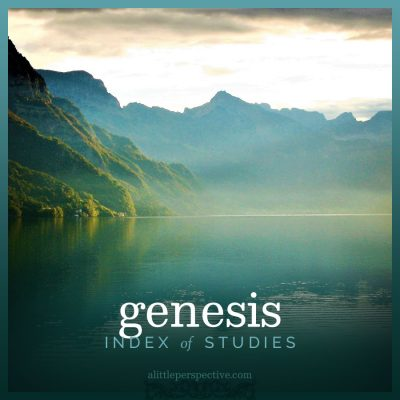 genesis index of studies
