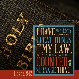 Hos 8:12 | scripture pictures at alittleperspective.com