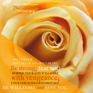 Isa 35:4 | scripture pictures @ alittleperspective.com