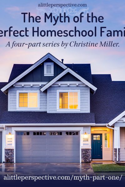 The Myth of the Perfect Homeschool Family   alittleperspective.com