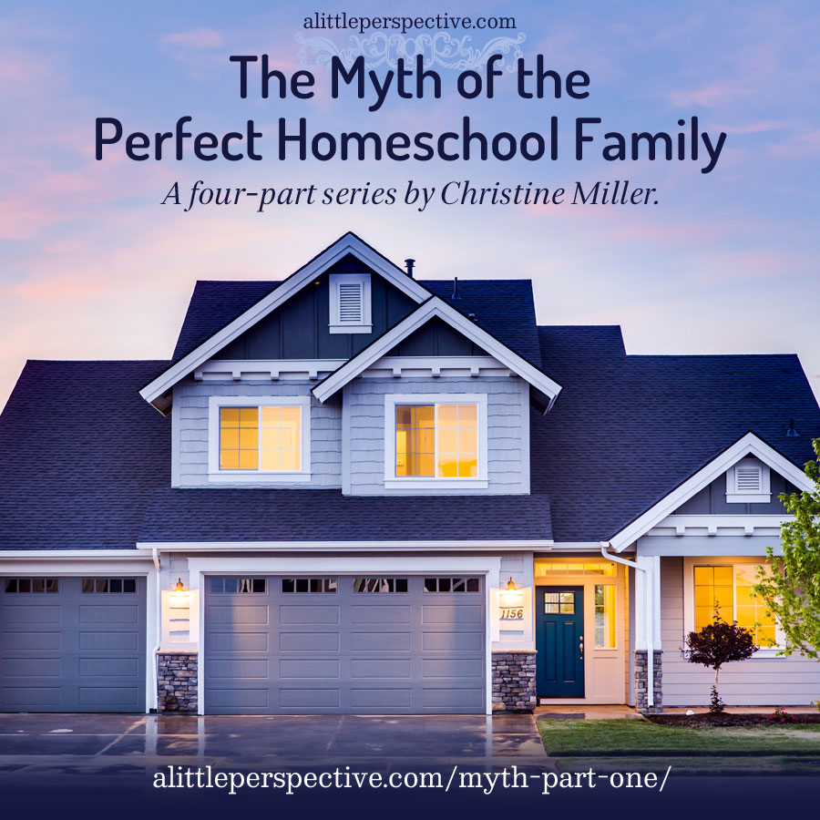 The Myth of the Perfect Homeschool Family | alittleperspective.com