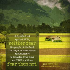 Num 14:9 | scripture pictures @ alittleperspective.com