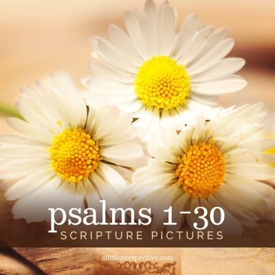 psalms 1-30 gallery updated