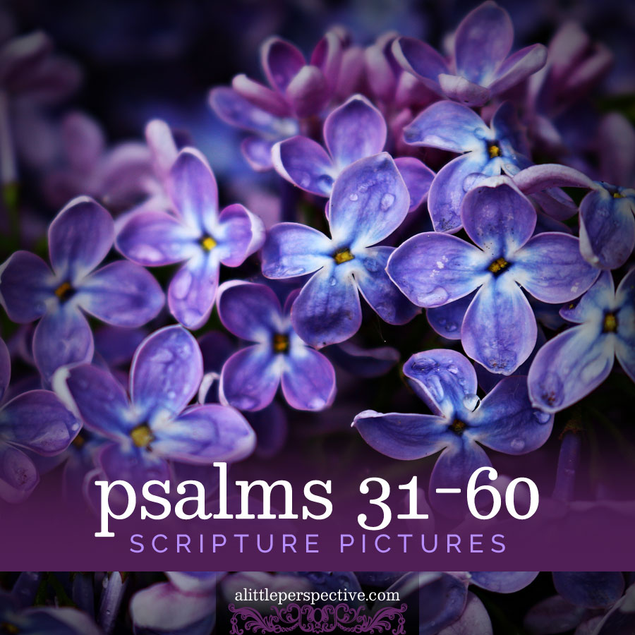 psalms 31-60 scripture pictures | alittleperspective.com