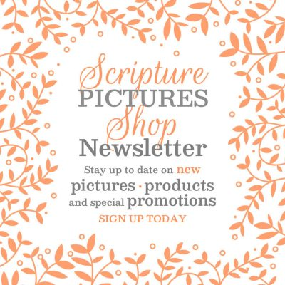 announcing scripture pictures shop newsletter