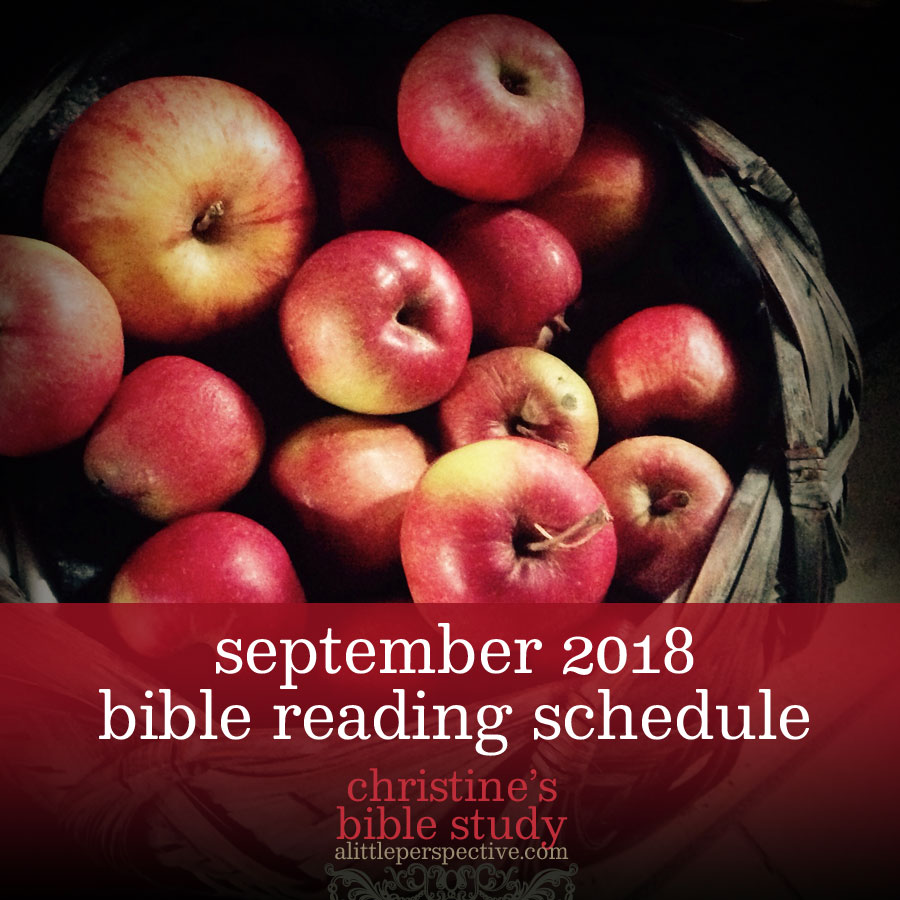 september 2018 bible reading schedule | christine's bible reading at alittleperspective.com