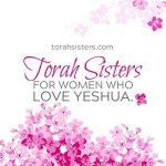 Torah Sisters