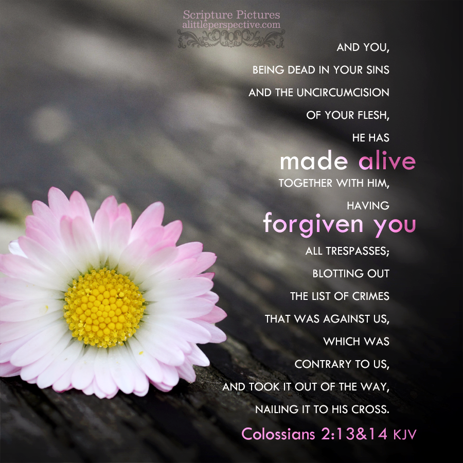 Col 2:13-14 | Scripture Pictures @ alittleperspective.com