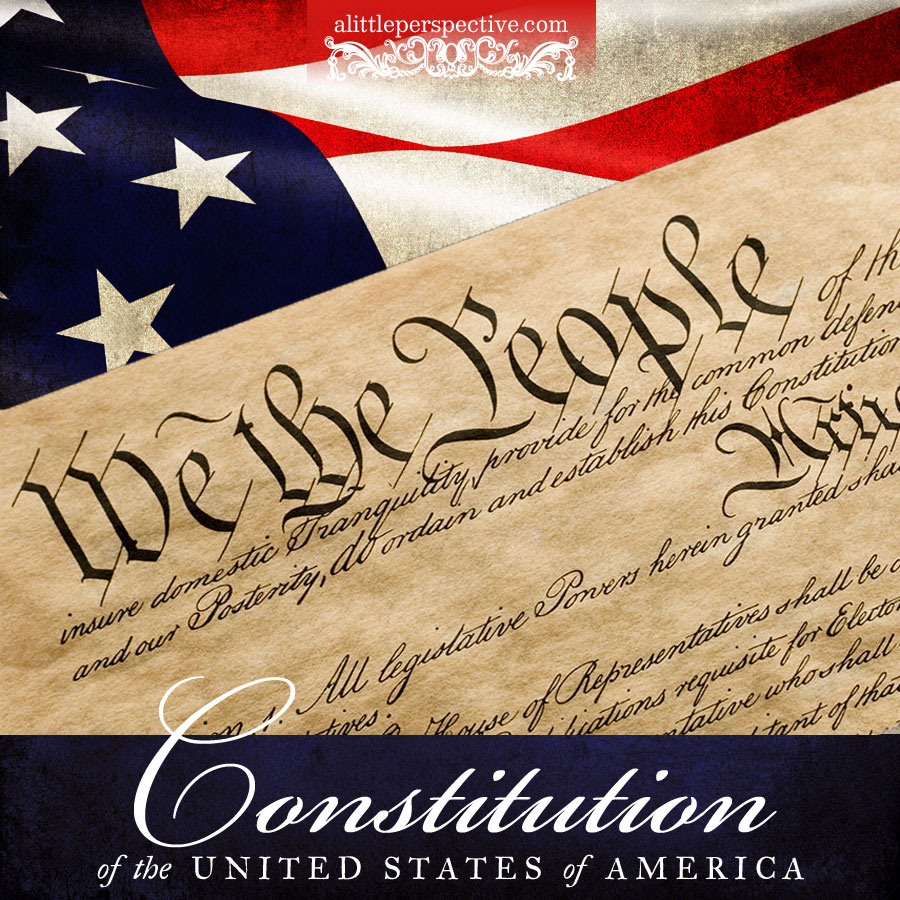 learn the constitution | alittleperspective.com