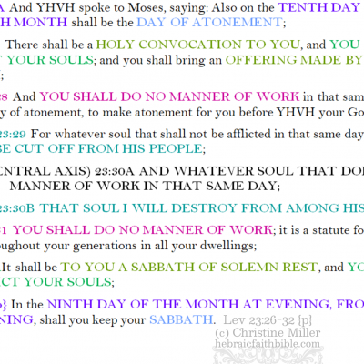 leviticus 23:26-32 {p} chiastic structure