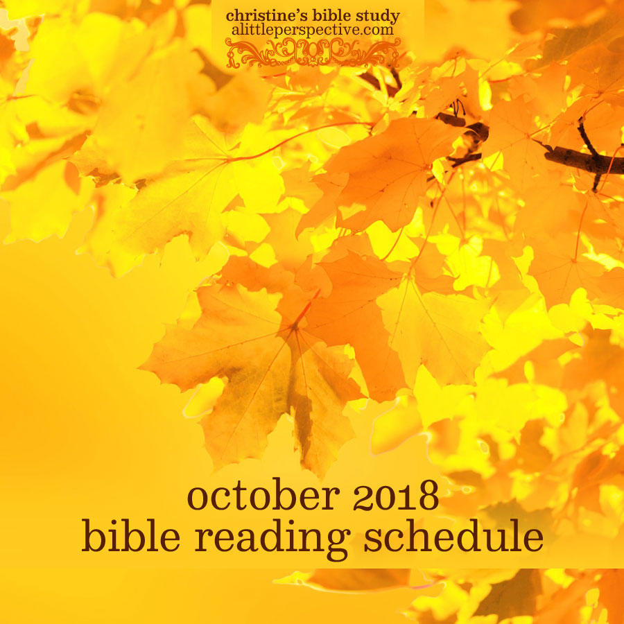 october 2018 bible reading schedule | christine's bible study at alittleperspective.com