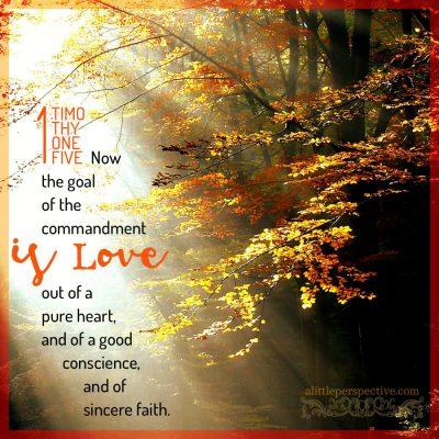 september 24 bible reading