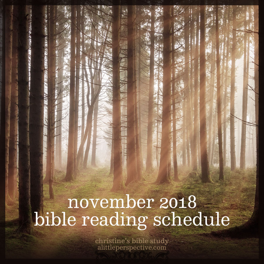November 2018 Bible Reading Schedule | christine's bible study at alittleperspective.com