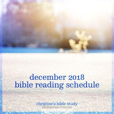 december 2018 bible reading schedule