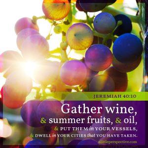 Jer 40:10 | scripture pictures at alittleperspective.com