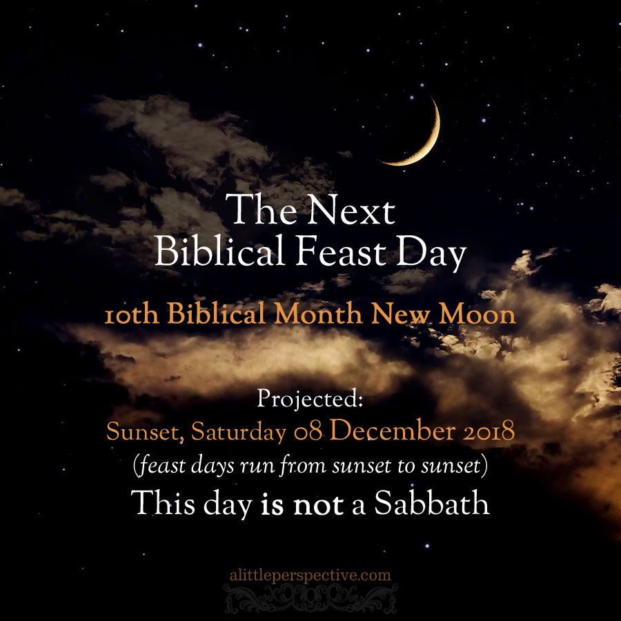 10th month new moon projected | alittleperspective.com