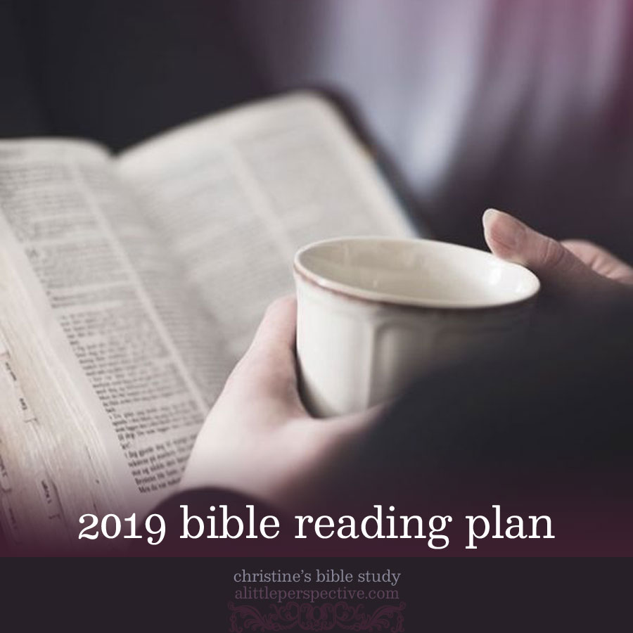 2019 bible reading plan | christine's bible study at alittleperspective.com