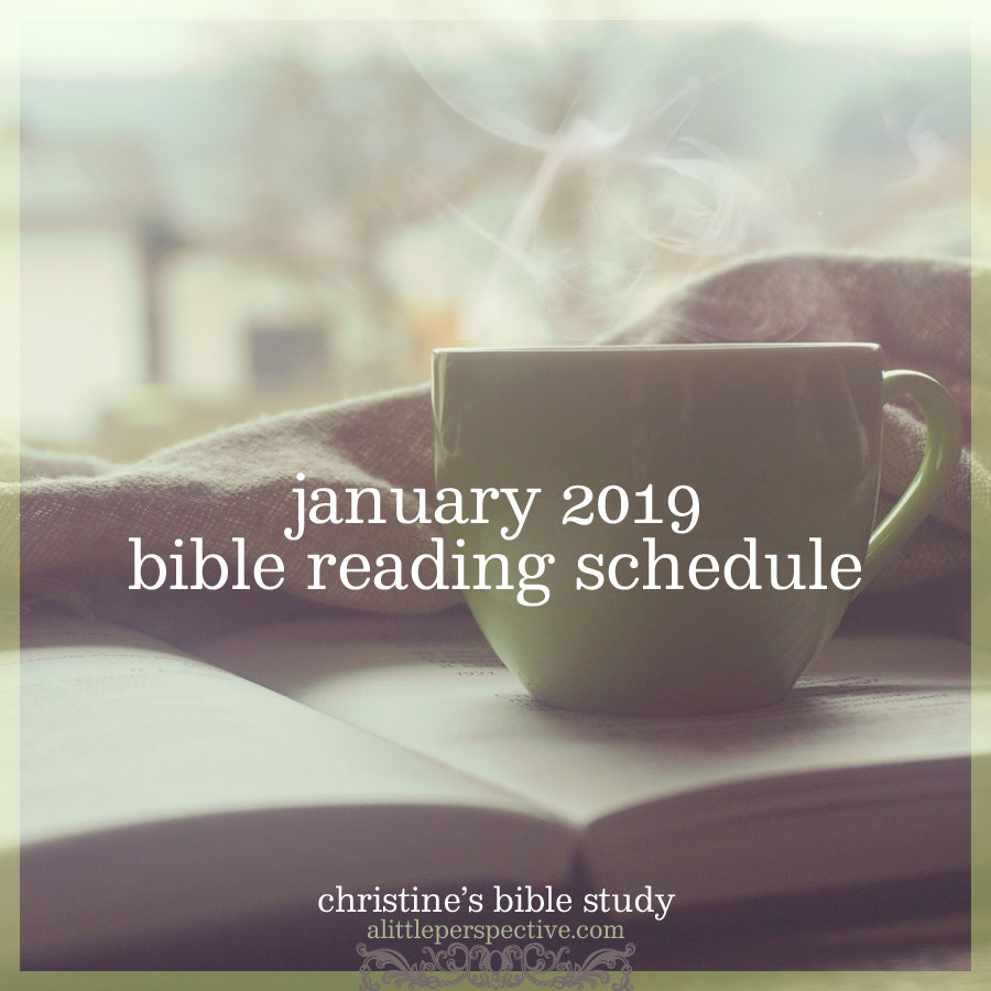 january 2019 bible reading schedule | christine's bible study at alittleperspective.com