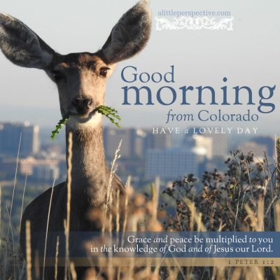 good morning from colorado