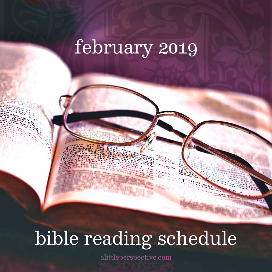 february 2019 bible reading schedule | christine's bible study at alittleperspective.com