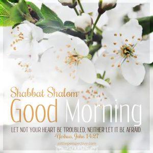 shabbat good morning   alittleperspective.com