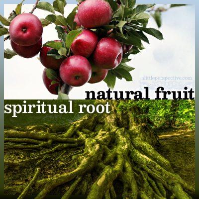 natural fruit, spiritual root