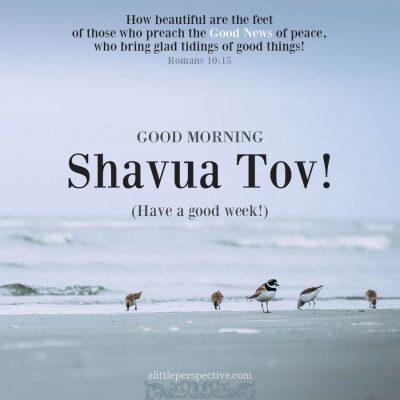 shavua tov good morning