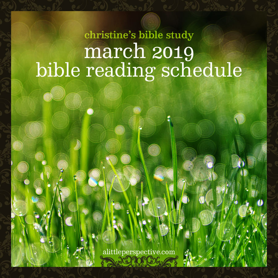 march 2019 bible reading schedule | christine's bible study at alittleperspective.com