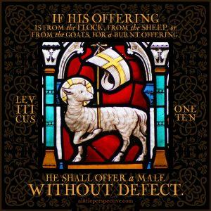 Lev 1:10 | scripture pictures @ alittleperspective.com
