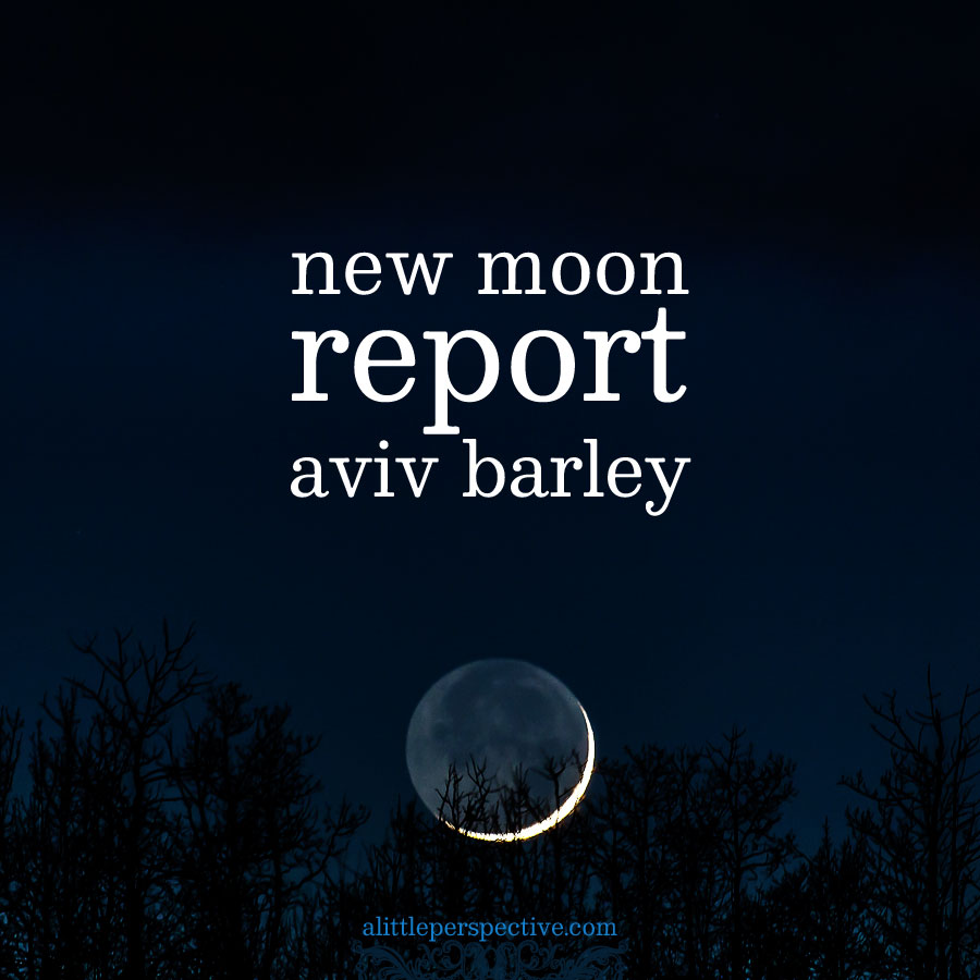 new moon report | alittleperspective.com