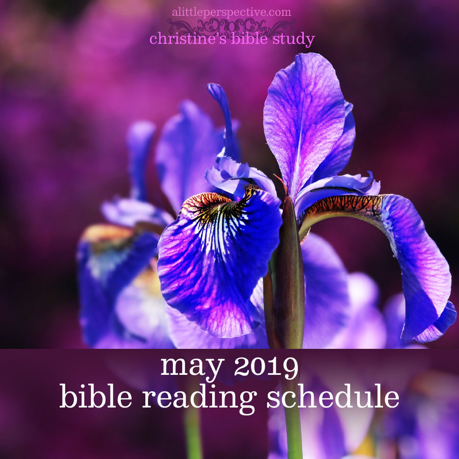 May 2019 Bible reading schedule | christine's bible study at alittleperspective.com