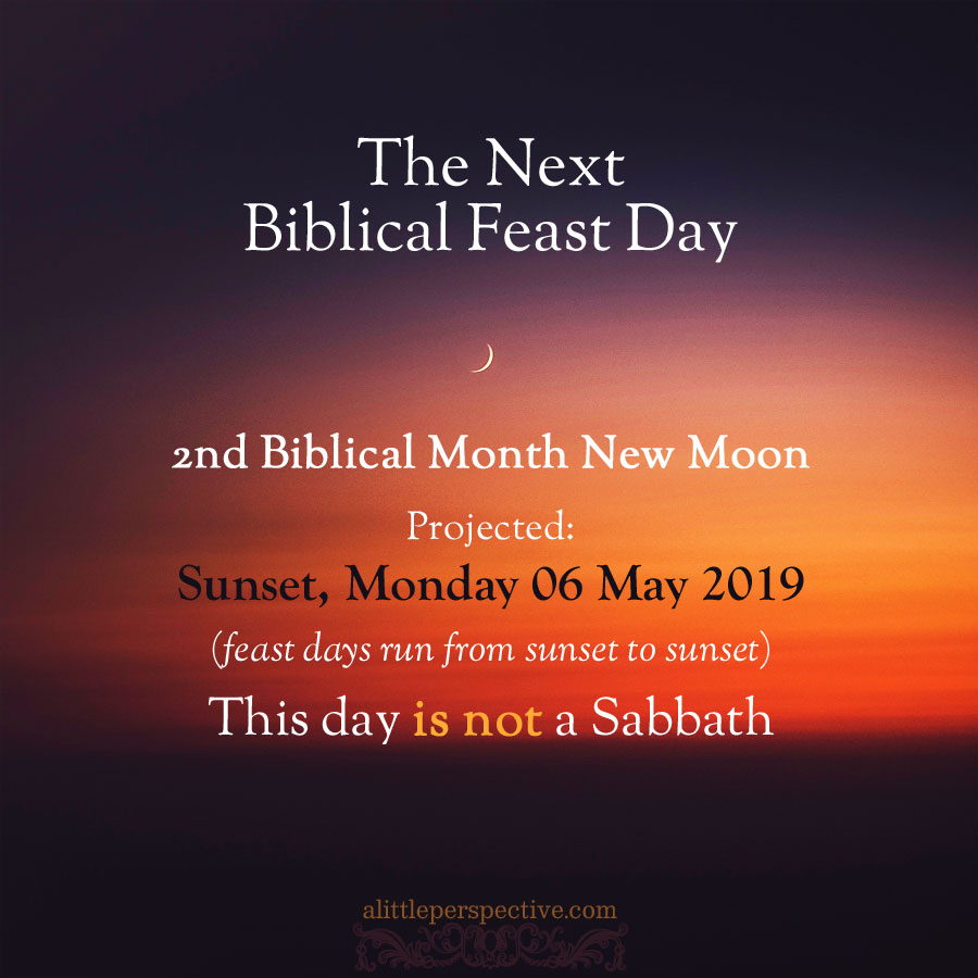 2nd month new moon | alittleperspective.com